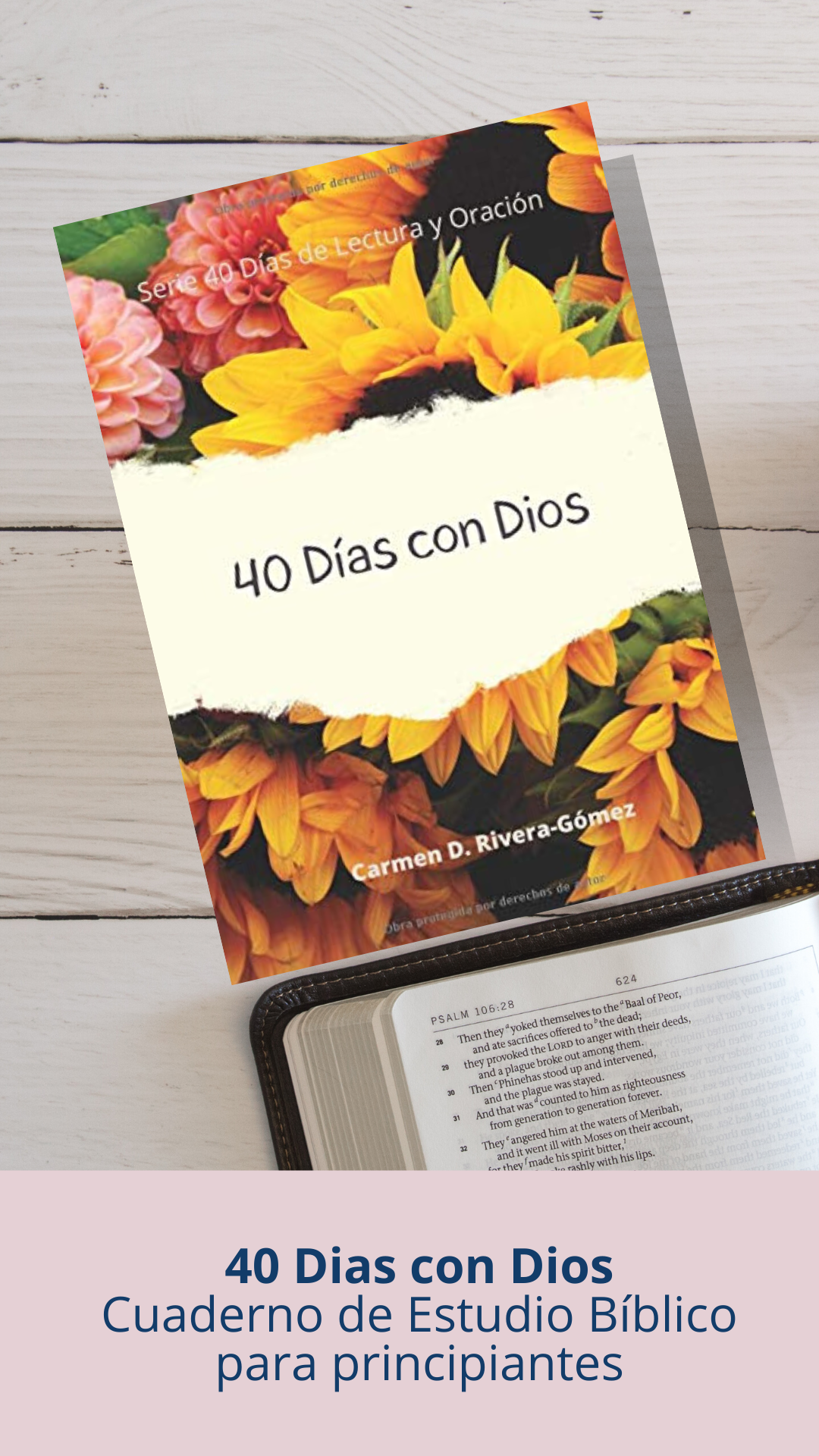 bible study workbook for beginners